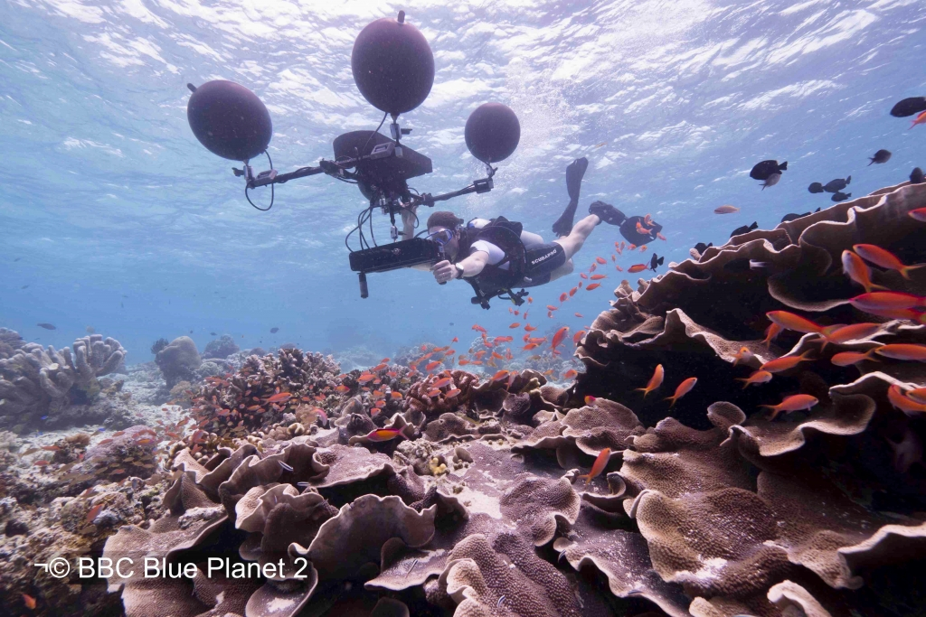 TALK: Underwater Sound in Blue Planet II | Thursday 3 May