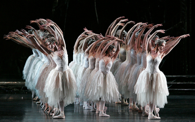 SCREENING: Swan Lake | Tuesday 12 June